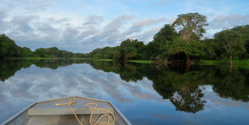 Life and Death in the Amazon